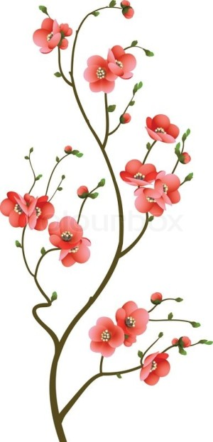 4000480-abstract-background-with-cherry-blossom-branch-isolated